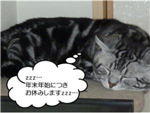 お休み(とら)