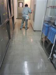 DSC_0159 (3)